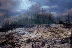 zonder titel (landschap #2) - € 300 - formaat 40x50cm