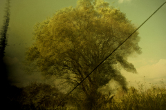 zonder titel (landschap #4) - € 300 - formaat 40x50cm