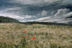 zonder titel (landschap #11) - € 400 - formaat 50x75cm