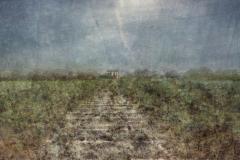 zonder titel (landschap #13) - € 325 - formaat 50x50cm