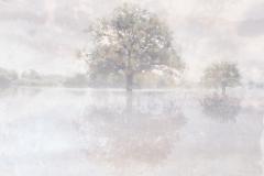 zonder titel (landschap #17) - € 300 - formaat 40x50cm