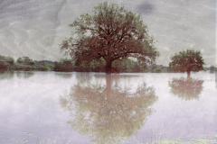 zonder titel (landschap #18) - € 300 - formaat 40x50cm