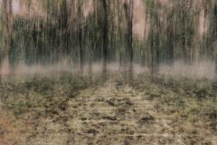 zonder titel (landschap #19) - € 300 - formaat 40x50cm